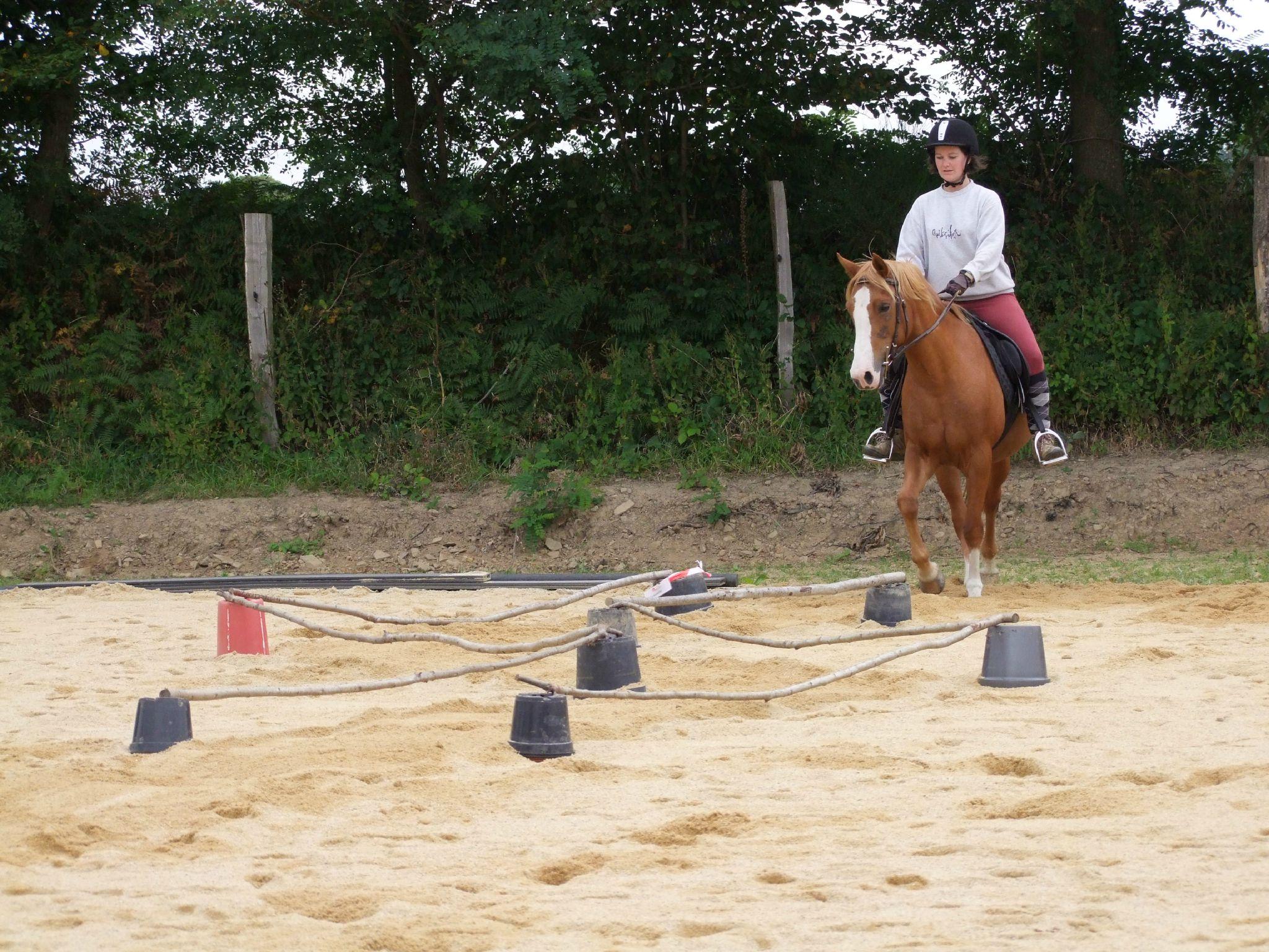 équitation d'extérieur - parcours en terrain varié (208)