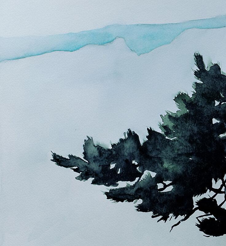 pin dans la brume, aquarelle 1 mai 2018