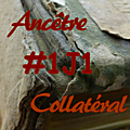 #1j1ancetre - #1j1collateral - 15 juillet