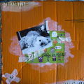 scrap freestyle en récup