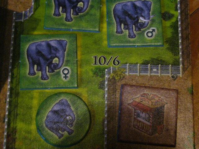 10 pts si enclos plein, 6 pts s'il manque un éléphant