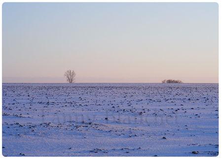 hiver5web