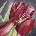 détail les tulipes