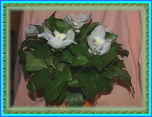 2009_0425Artfloral_N__1_0015