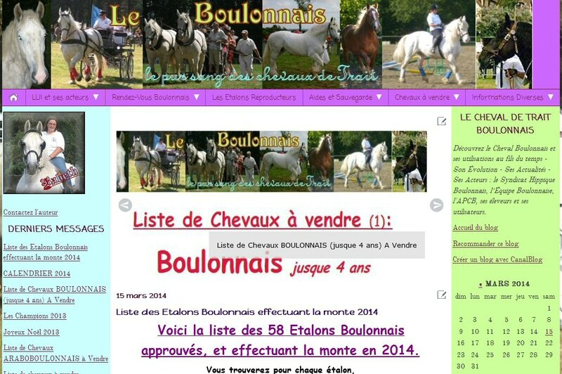 screen Blog - Carrousel - article