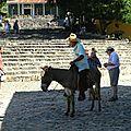Papy sur son âne