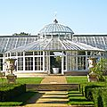 Chiswick_greenhouse-3