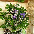 Composition de branches de marronier et d'iris .