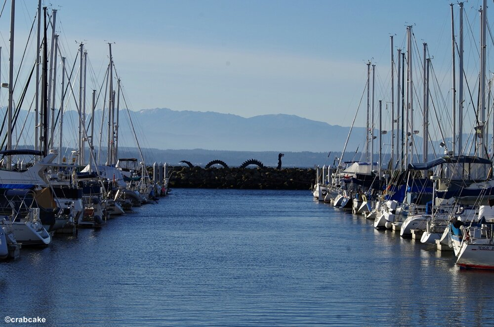 Golden Gardens Marina Seattle