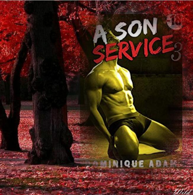 A son service volume 3 (Dominique Adam)