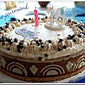 Gâteau-entremets