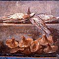 きのこの名前 origine des noms de champignons, par marcel locquin