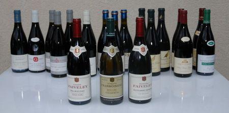 Vin_Bourgogne_NSG Faiveley