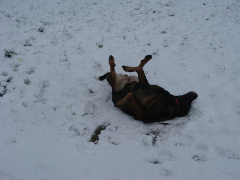 Neige à Ecault 021