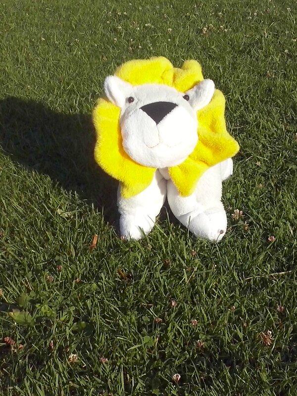 Som'Ba en peluche lion