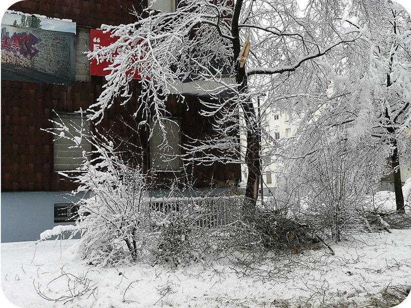 Quartier Drouot - Photo neige 52
