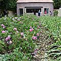 Jardins jardin 2018 - tuileries