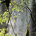 des cascades en cascades