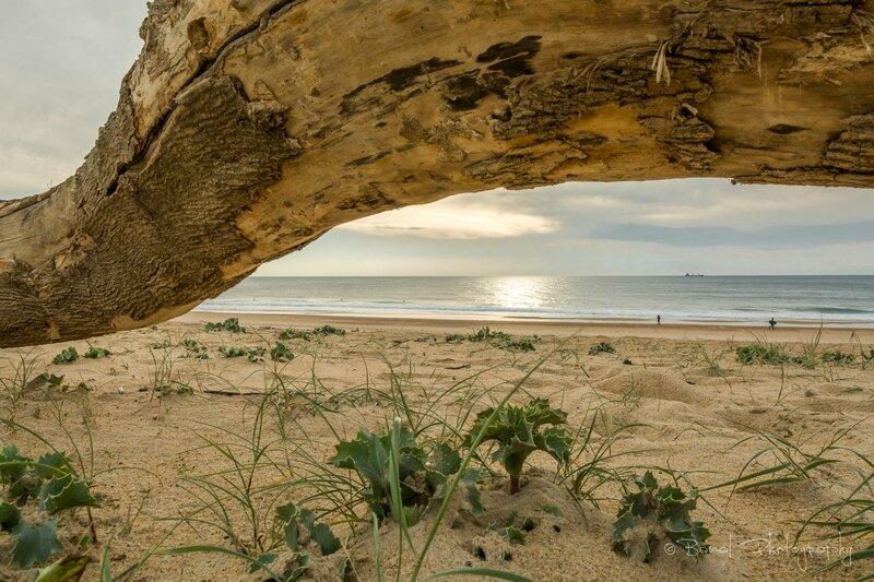 Tarnos plage