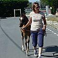 Précisions quant à la manipulation des foals