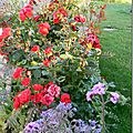 Windows-Live-Writer/Jardin_10232/DSCN0796_thumb