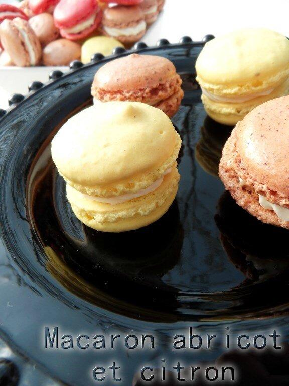 macaron abricot et citron1