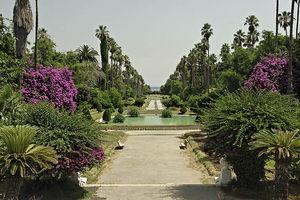 jardin_d_essai