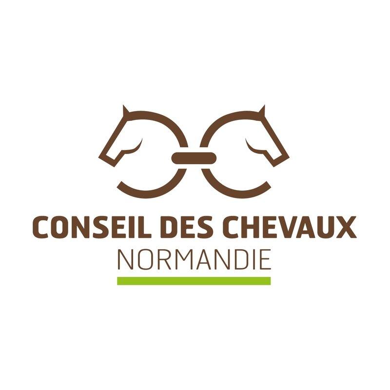 logo-ccn-2016