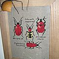 broderie insecte