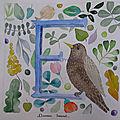 #5 abécédaire des oiseaux , le e