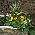 Arengement floral