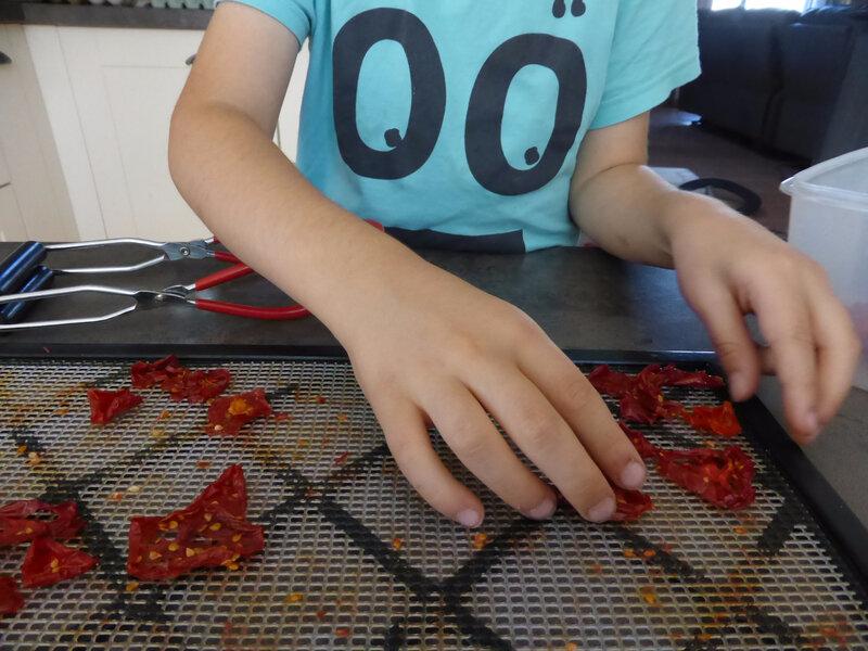 2-tomates séchées (1)