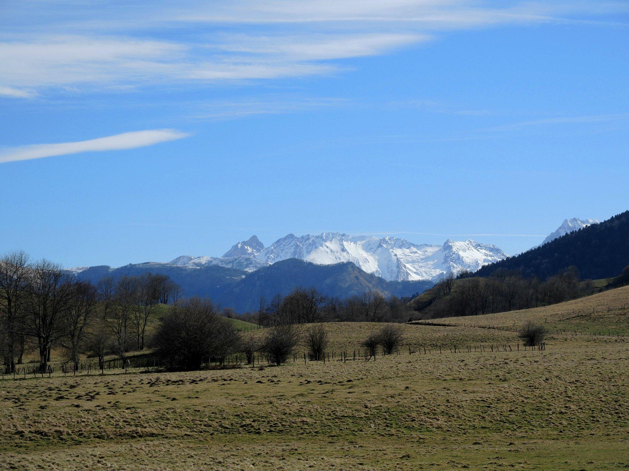 Plateau du Bénou, montagnes et champs (64)