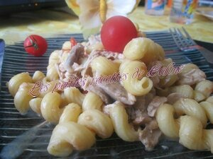 one-pot-pasta-poulet-optimisation-image-wordpress-google-taille