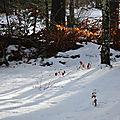 [drôme] de la neige au grand echaillon