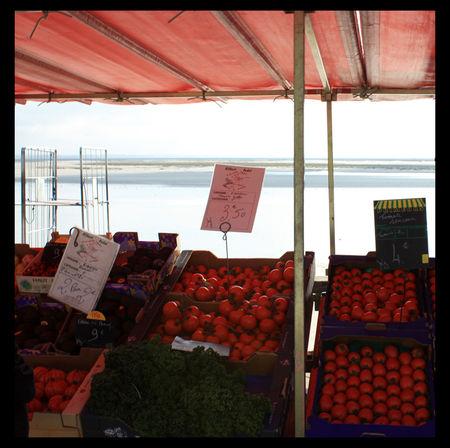 tomates_de_mer