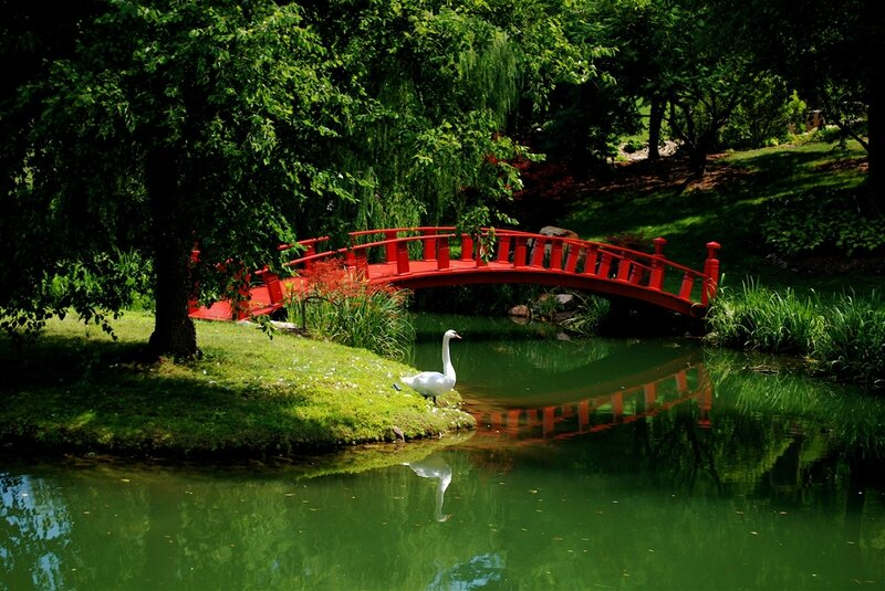 Pont-rouge-Jardin-Chinois