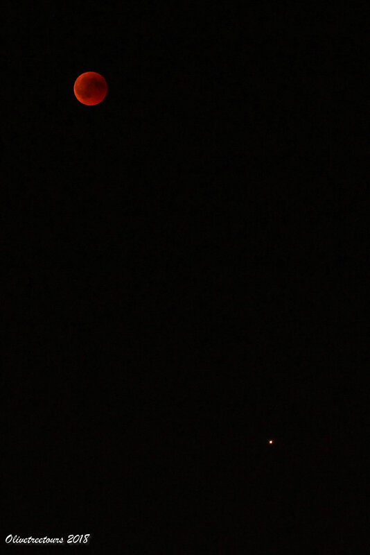 Lune éclipsée et Mars / Eclipsed Moon and Mars