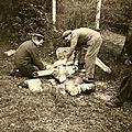 Abattage à la tronçonneuse - Année 1960