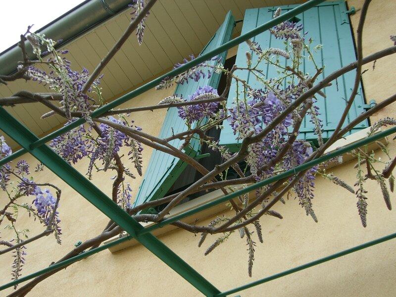 Jardin 29 Mars 2014 027