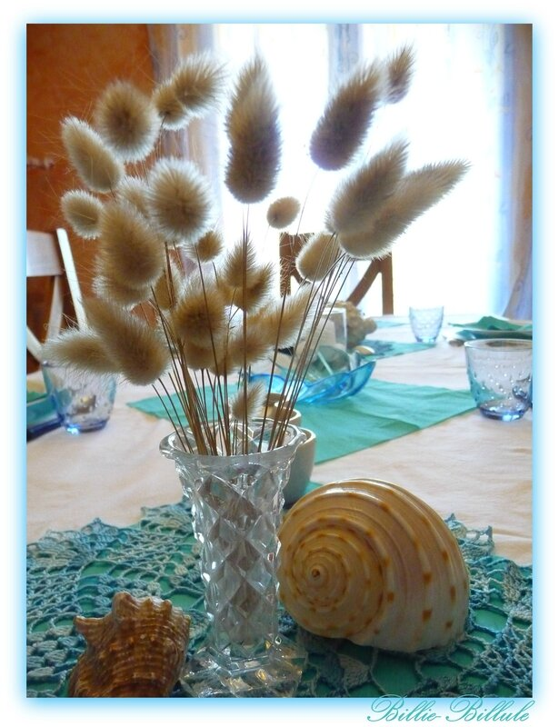 table coquillages10