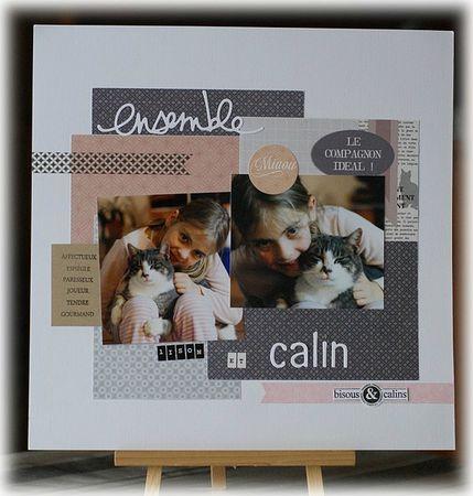 Calin2