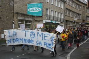 manifestation anti THT EPR Avranches 29 septembre 2012 centre ville