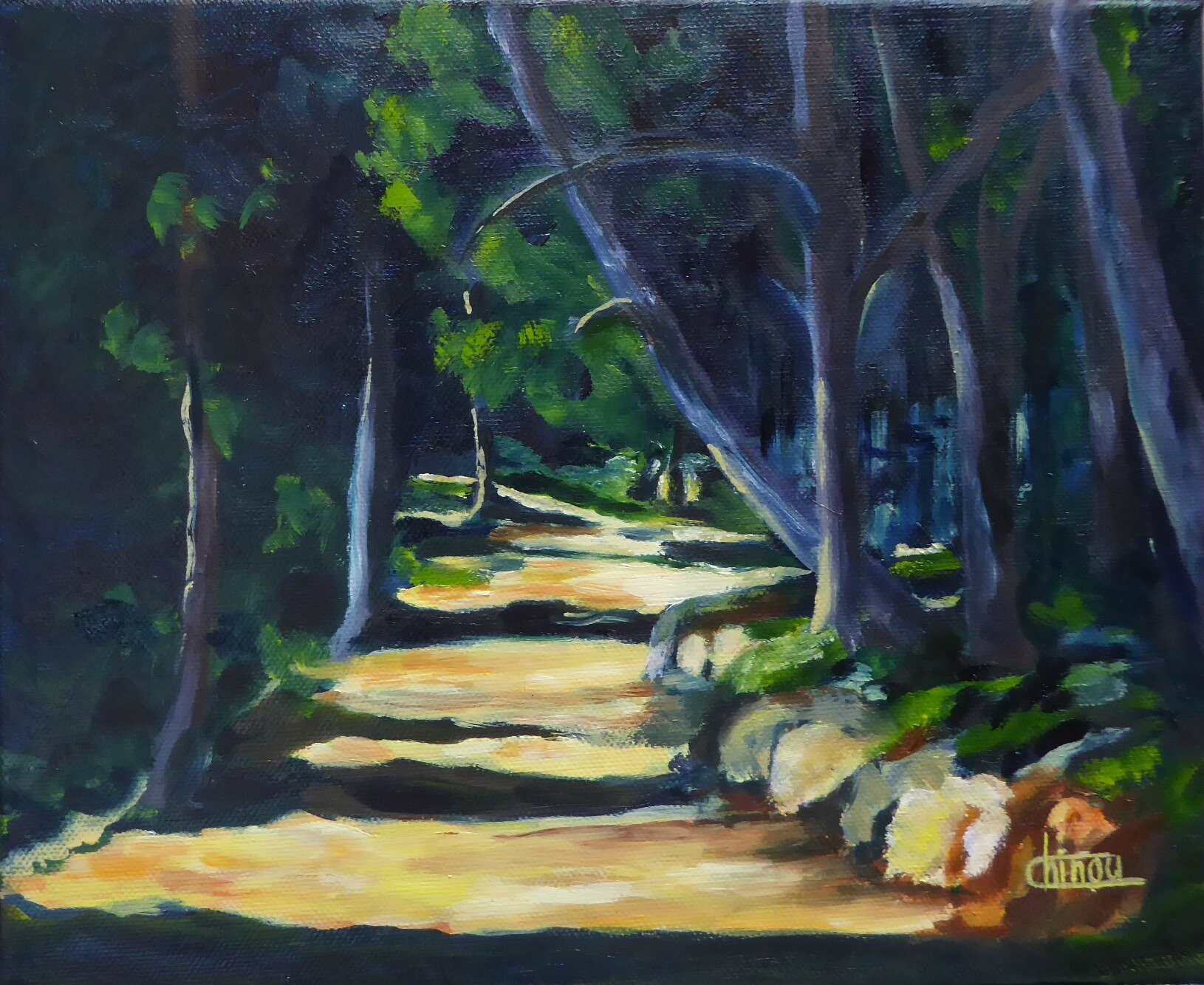 Chemin Lac de Peiroo