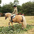équitation de pleine nature - rallye équestre (96)