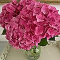Le bouquet du vendredi ou les hortensias