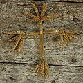 Croix de blé