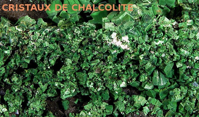 chalcolite
