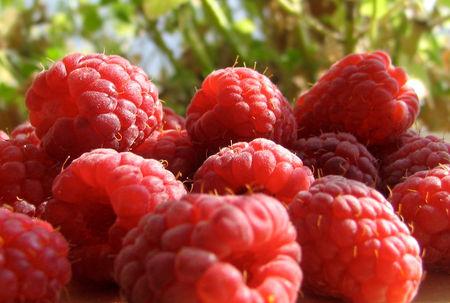 raspberry_1024