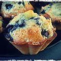 Muffins à la myrtille de mme ven der kamp